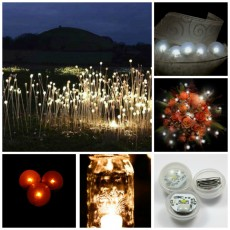 Using and taking care of your Fairy Berry Light's
