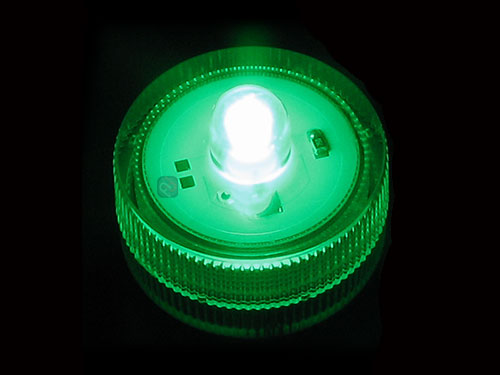 10 green submersible led lights, Reel Combo